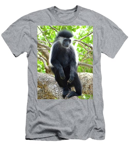 Colobus Monkey Sitting In A Tree 2 Men's T-Shirt (Athletic Fit)