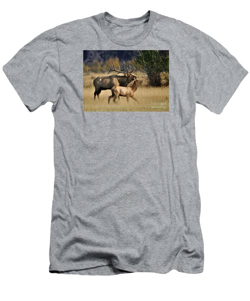 Colorado Elk  Men's T-Shirt (Athletic Fit)