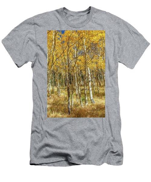 Colorado Gold Men's T-Shirt (Athletic Fit)
