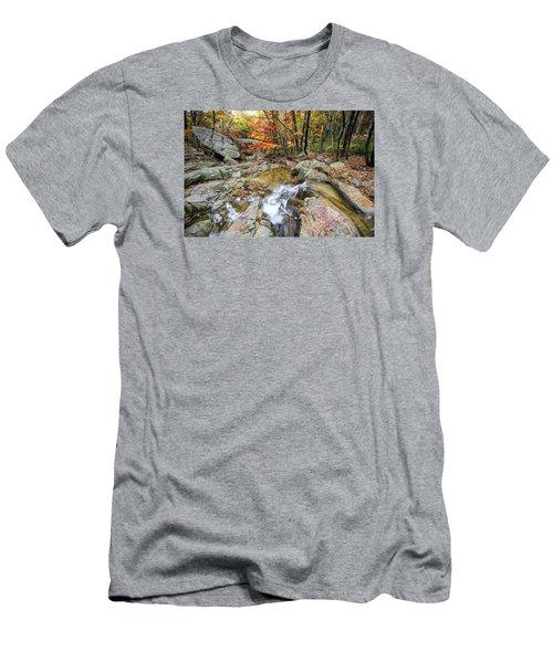 Colour Of Autumn Men's T-Shirt (Athletic Fit)