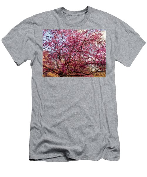 Columnar Sargent Cherry 1 Men's T-Shirt (Athletic Fit)