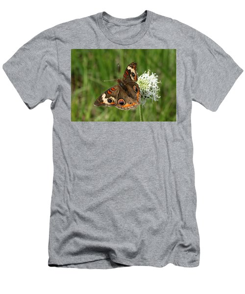 Common Buckeye Butterfly On Wildflower Men's T-Shirt (Slim Fit) by Sheila Brown