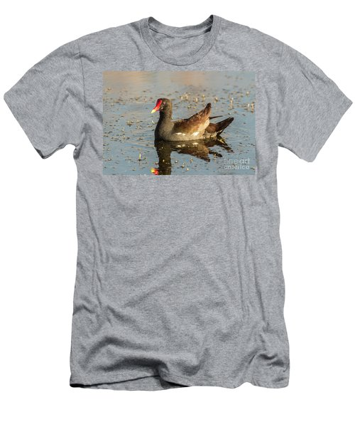 Men's T-Shirt (Slim Fit) featuring the photograph Common Gallinule by Robert Frederick