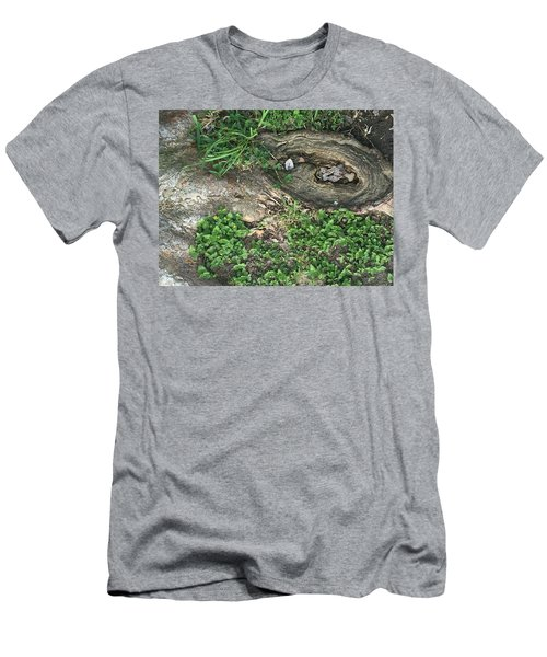 Composition In Trees Men's T-Shirt (Athletic Fit)