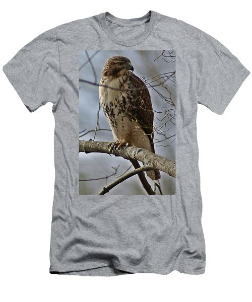 Cooper's Hawk 2 Men's T-Shirt (Athletic Fit)