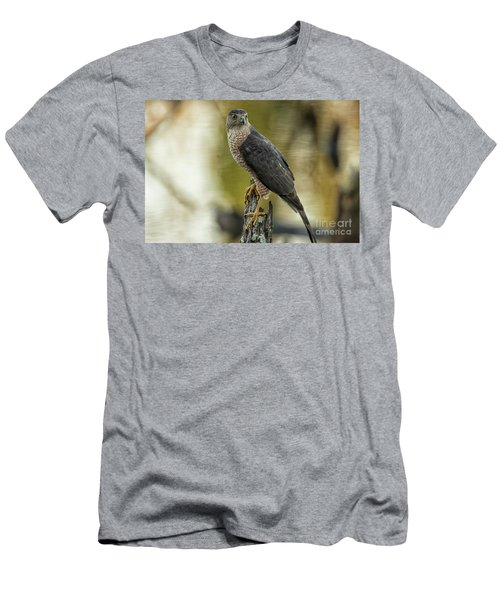 Cooper's Hawk Men's T-Shirt (Athletic Fit)