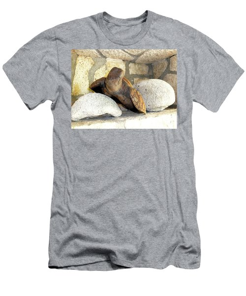 Men's T-Shirt (Athletic Fit) featuring the photograph Coral And Turtle Decor by Francesca Mackenney