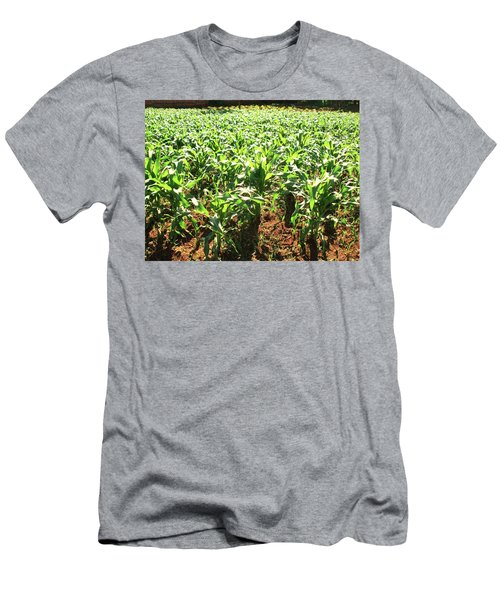 Men's T-Shirt (Slim Fit) featuring the photograph Corn Island by Beto Machado