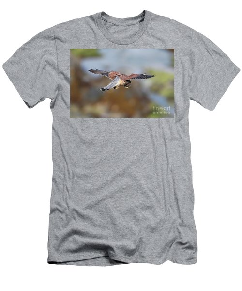 Men's T-Shirt (Slim Fit) featuring the photograph Cornish Kestrel Hunting by Nicholas Burningham