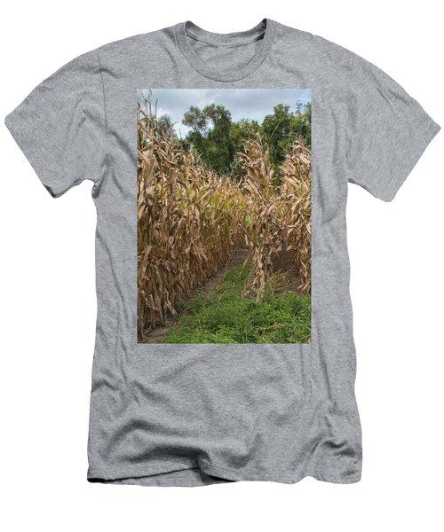 Cornstalks Men's T-Shirt (Athletic Fit)
