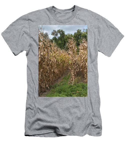 Cornstalks Men's T-Shirt (Athletic Fit)