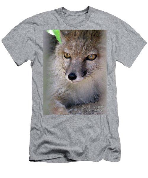 Men's T-Shirt (Athletic Fit) featuring the photograph Corsac Fox- Vulpes Corsac 03 by Ausra Huntington nee Paulauskaite