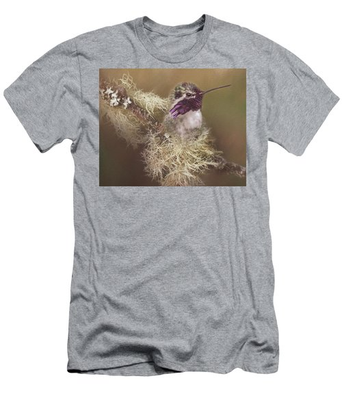 Costas Hummingbird Painted Men's T-Shirt (Athletic Fit)