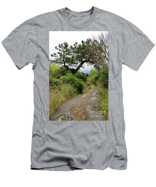 Country Road. New Zealand Men's T-Shirt (Slim Fit) by Yurix Sardinelly