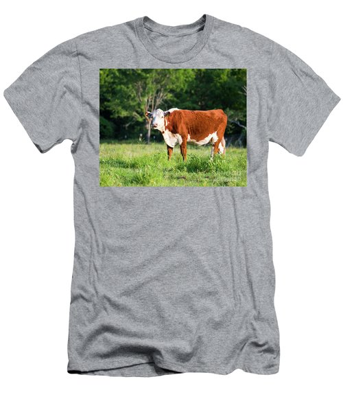 Cow #1 Men's T-Shirt (Athletic Fit)