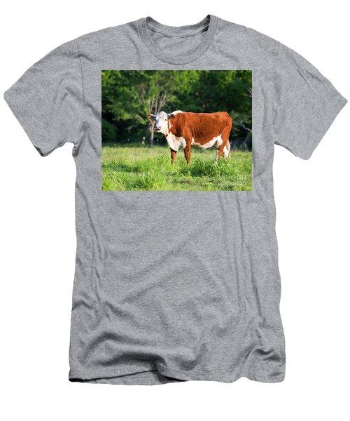 Cow #1 Men's T-Shirt (Athletic Fit)
