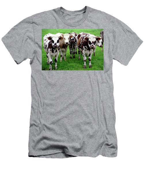 Men's T-Shirt (Athletic Fit) featuring the photograph Cow Group by Frank DiMarco