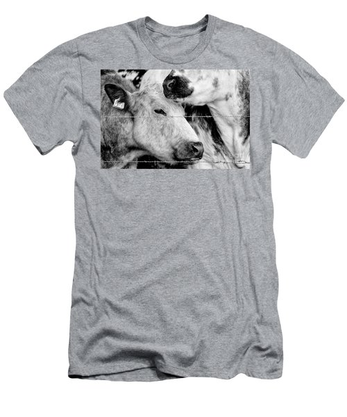 Men's T-Shirt (Athletic Fit) featuring the photograph Cows Behind Barbed Wire by Nick Biemans