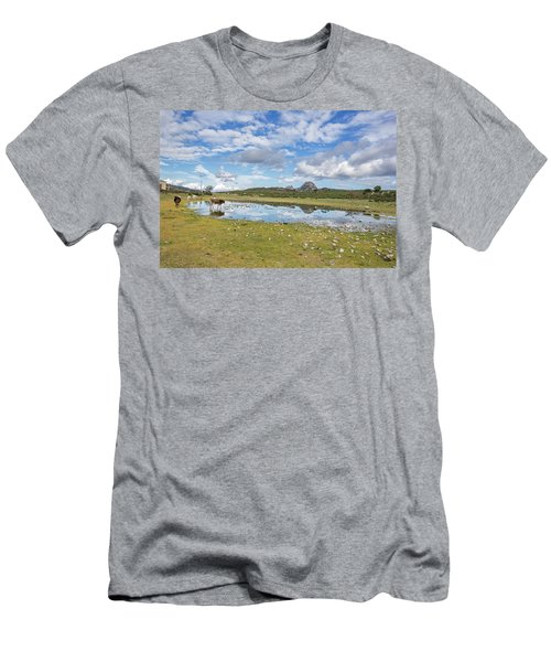 Reflected Cows  Men's T-Shirt (Athletic Fit)
