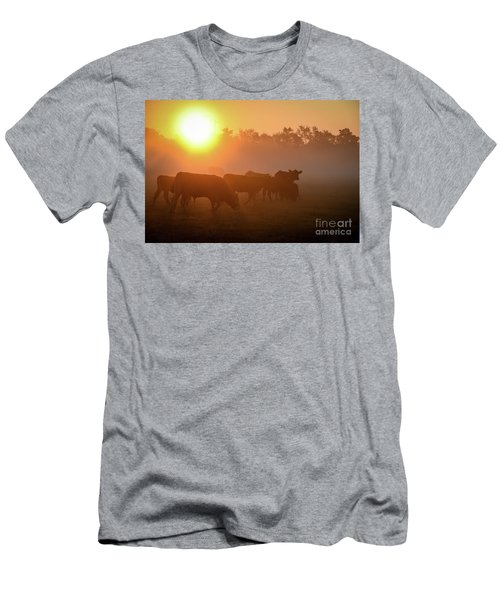 Cows In The Sunrise Mist Men's T-Shirt (Athletic Fit)