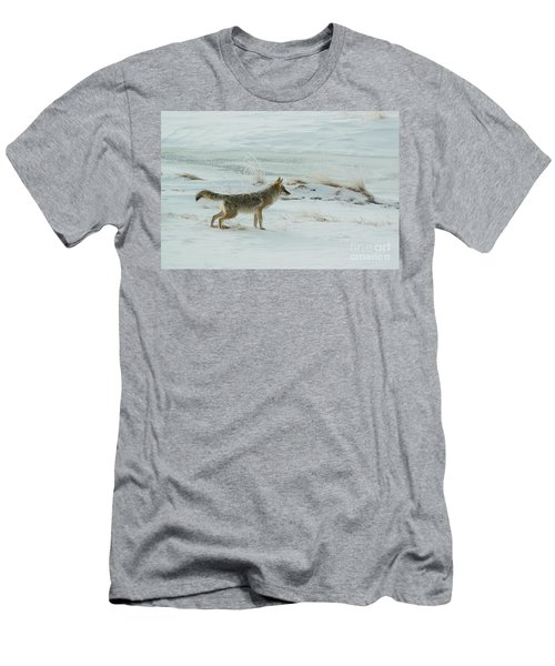 Coyote - 8962 Men's T-Shirt (Athletic Fit)