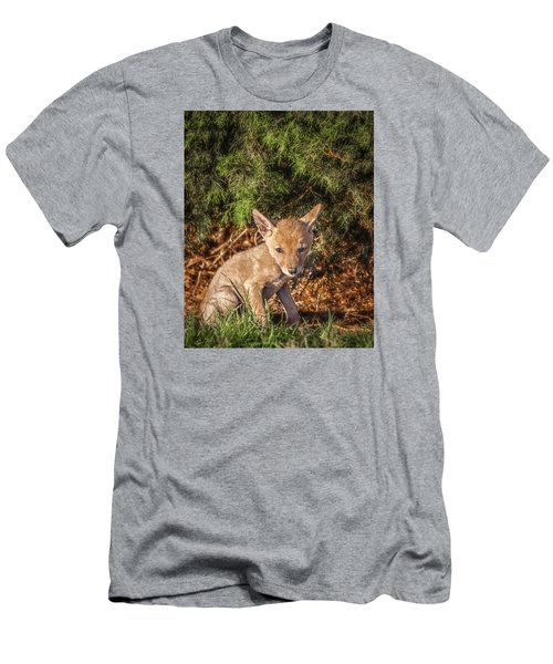 Coyote Pup Men's T-Shirt (Athletic Fit)
