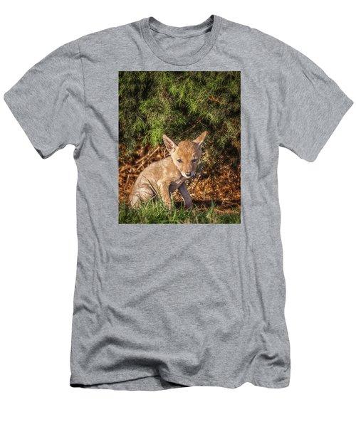 Coyote Pup Men's T-Shirt (Athletic Fit)