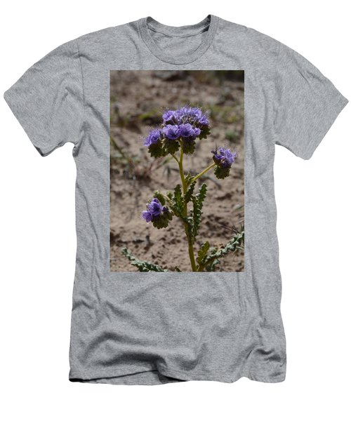 Crenulate Phacelia Flower Men's T-Shirt (Slim Fit) by Jenessa Rahn