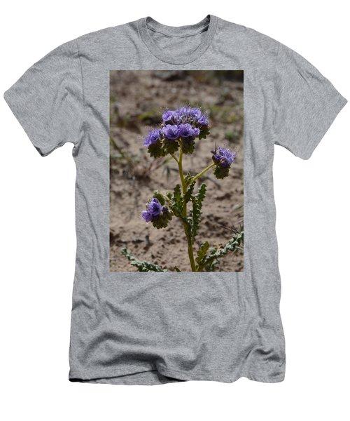 Crenulate Phacelia Flower Men's T-Shirt (Athletic Fit)