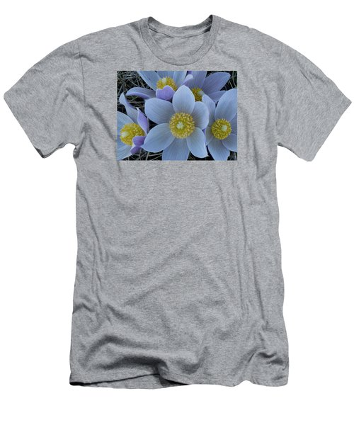 Crocus Blossoms Men's T-Shirt (Athletic Fit)