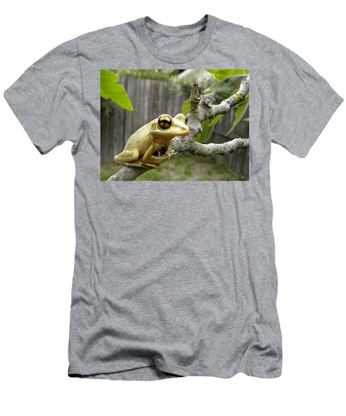 Cuban Tree Frog 001 Men's T-Shirt (Athletic Fit)