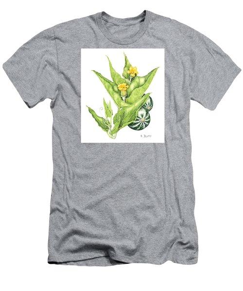 Cucurbita Foetidissima Men's T-Shirt (Athletic Fit)
