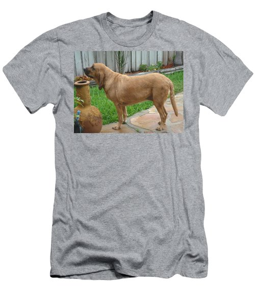 Cujo Getting A Scent Men's T-Shirt (Slim Fit) by Val Oconnor