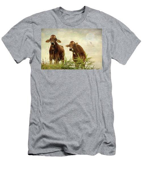 Curious Cows Men's T-Shirt (Athletic Fit)