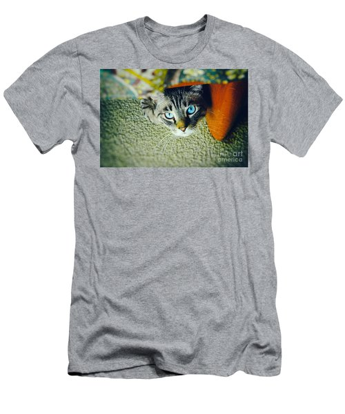 Men's T-Shirt (Slim Fit) featuring the photograph Curious Kitty by Silvia Ganora