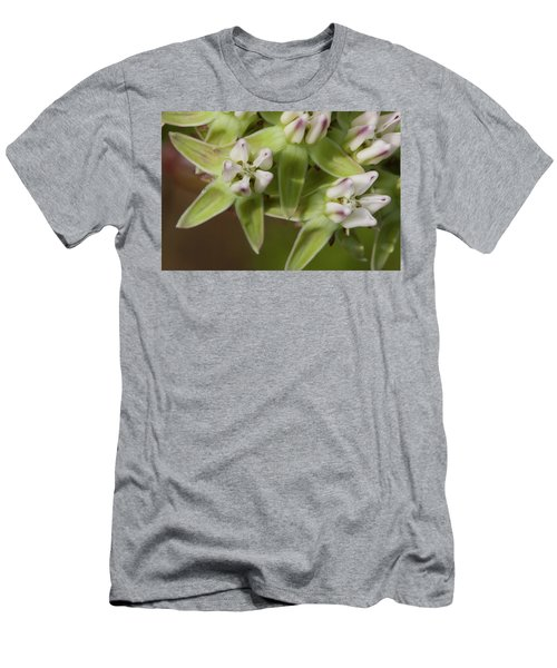 Curtiss' Milkweed #4 Men's T-Shirt (Athletic Fit)