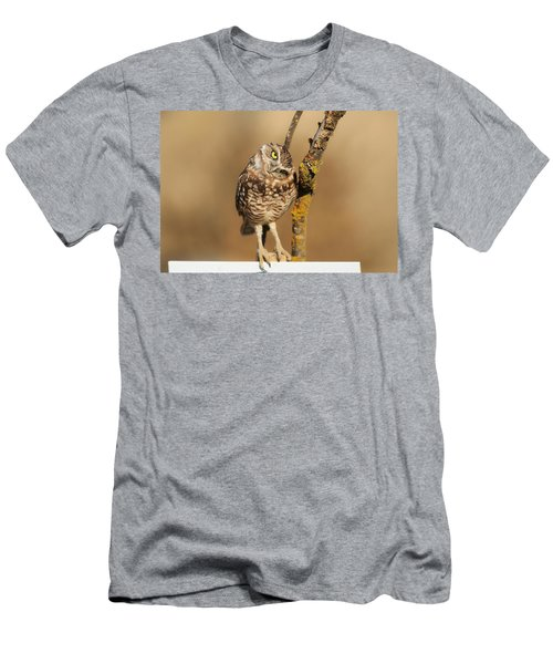Cute Burrowing Owl Men's T-Shirt (Athletic Fit)