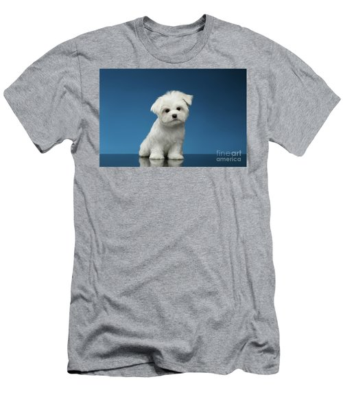 Cute Pure White Maltese Puppy Standing And Curiously Looking In Camera Isolated On Blue Background Men's T-Shirt (Athletic Fit)