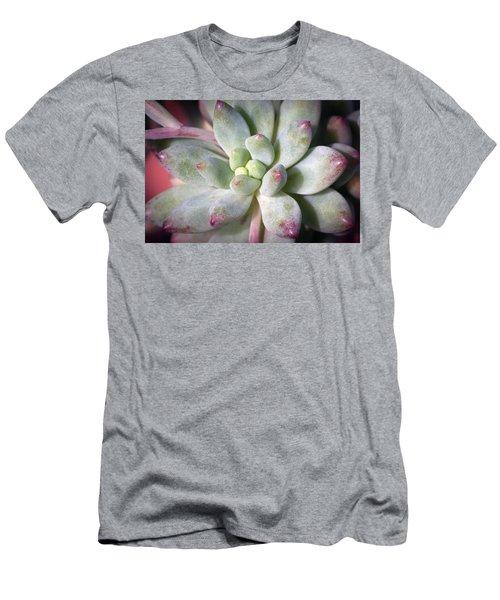Men's T-Shirt (Slim Fit) featuring the photograph Cute Succulent Plant by Catherine Lau
