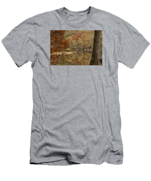 Cypress Window Men's T-Shirt (Athletic Fit)