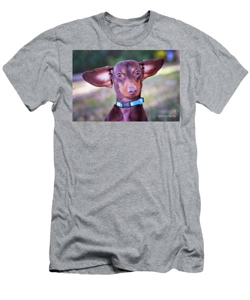 Dachshund Ears Up Men's T-Shirt (Athletic Fit)