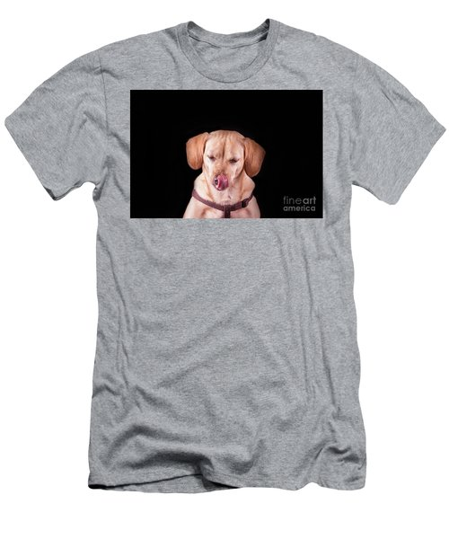 Dachshund Mix Licking Lips Men's T-Shirt (Slim Fit) by Stephanie Hayes