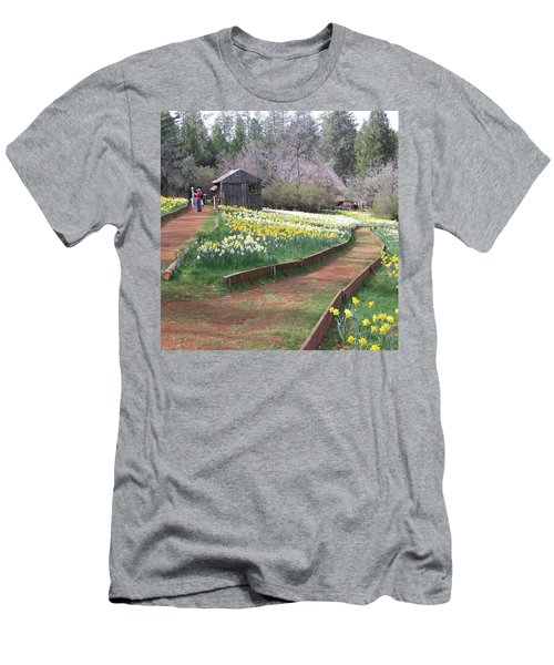 Daffodil Hill Pathway Men's T-Shirt (Slim Fit) by Karen J Shine