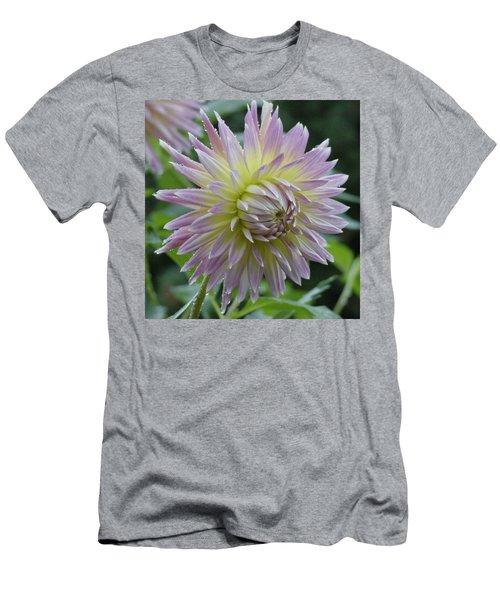 Dahlia Delight Men's T-Shirt (Slim Fit) by Shirley Heyn