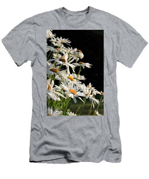 Daisies Men's T-Shirt (Athletic Fit)