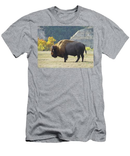 Dakota Badlands Majesty Men's T-Shirt (Athletic Fit)