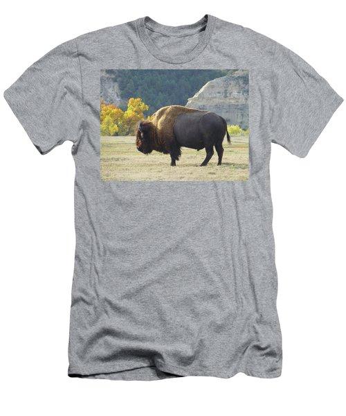 Dakota Badlands Majesty Men's T-Shirt (Athletic Fit)