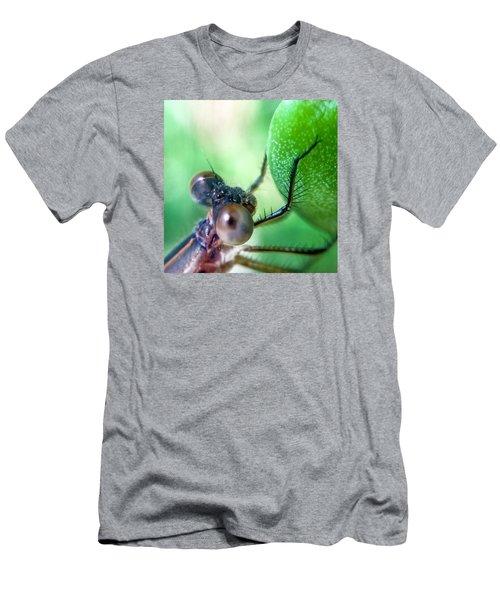 Damsel Fly Men's T-Shirt (Athletic Fit)
