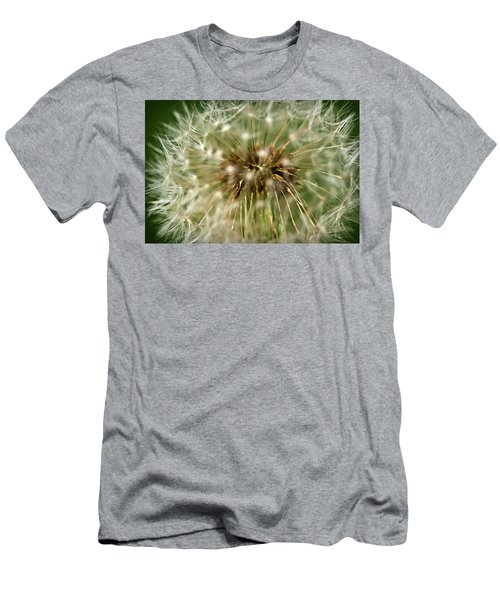 Dandelion Seed Head Men's T-Shirt (Athletic Fit)