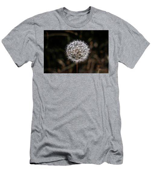 Dandelion Men's T-Shirt (Athletic Fit)